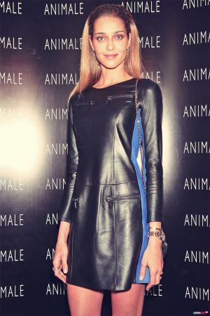 Ana Beatriz Barros walks for Animale Spring Summer 2014