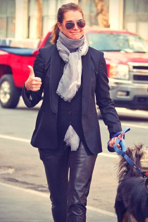 Brooke Shields taking a stroll with her pet dog