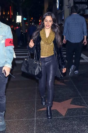 Camila Cabello out and about in LA