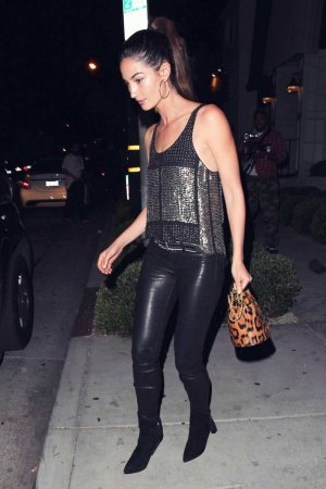 Lily Aldridge spotted out for dinner at Gracias Madre
