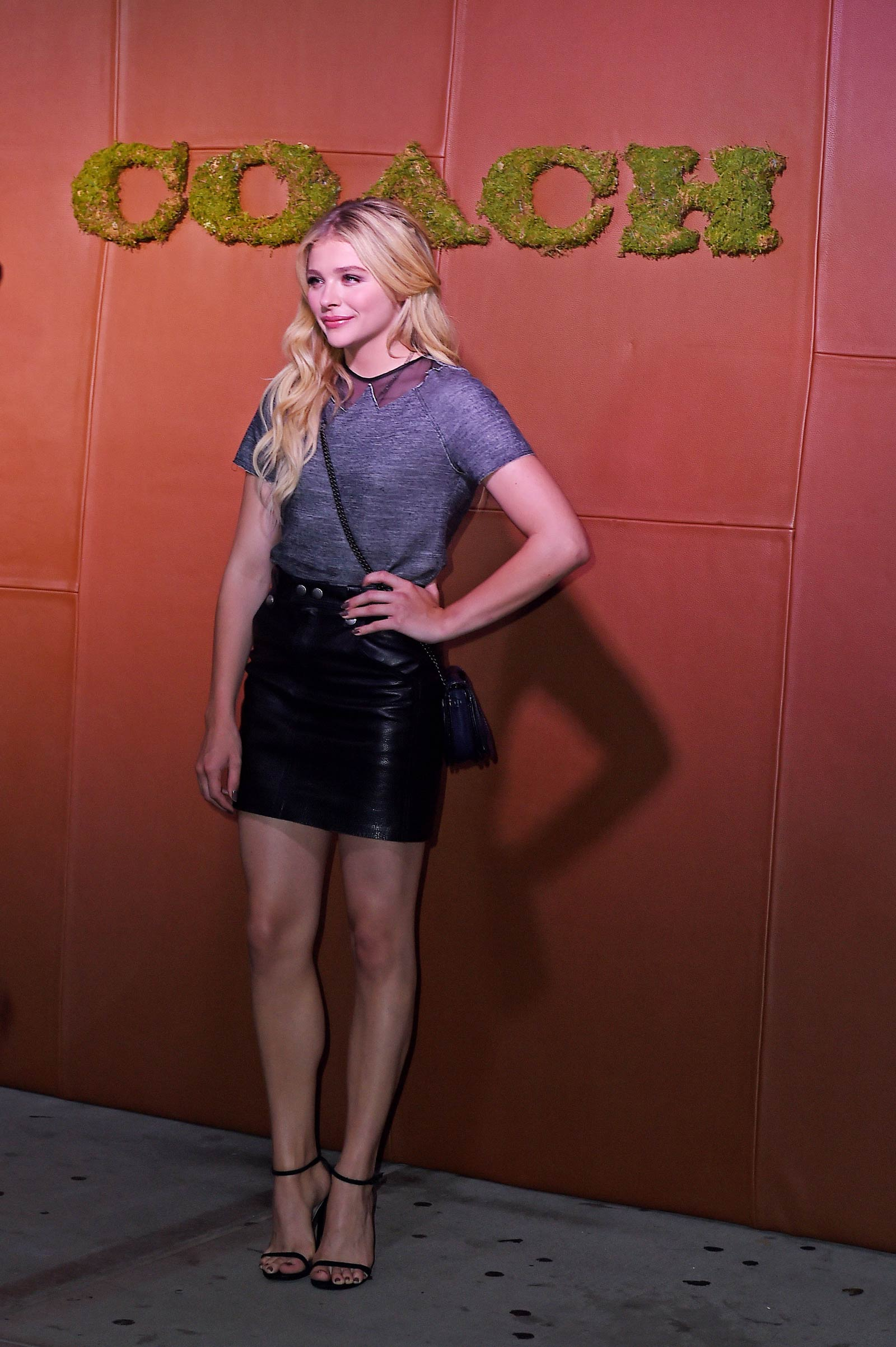 Chloe Moretz attends 5th Annual Coach and Friends of the High Line Summer Party
