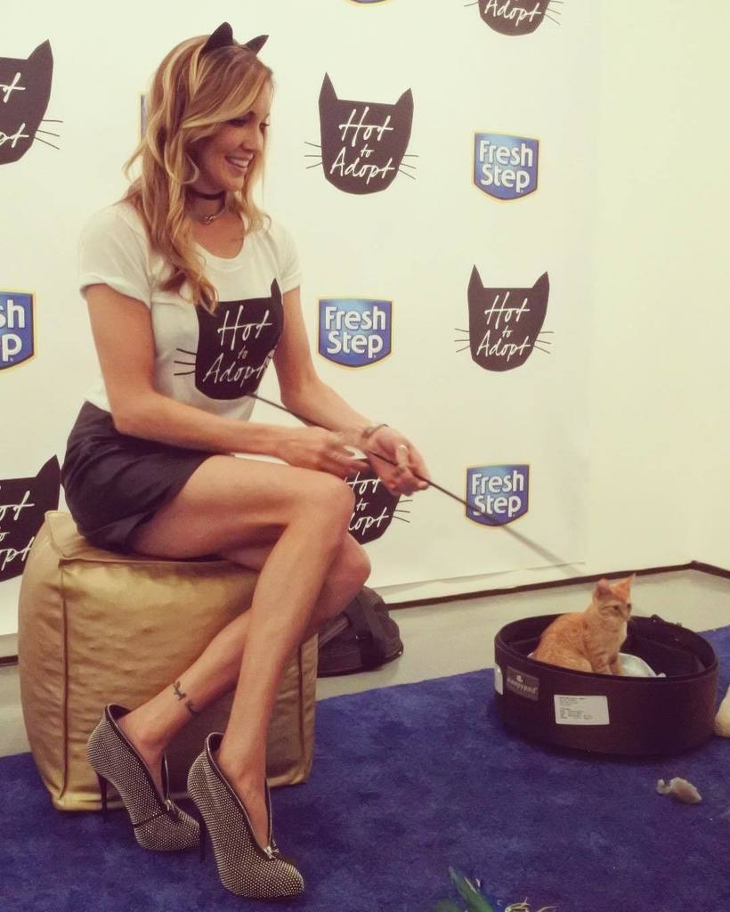 hot sexy pussy katie cassidy gallery