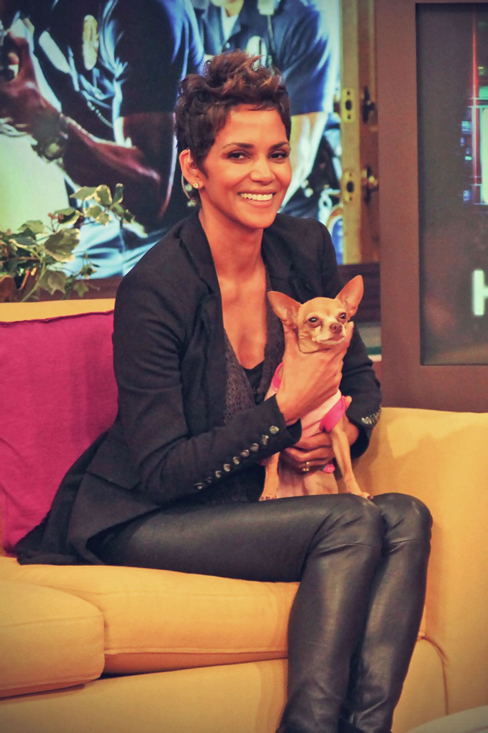Halle Berry appears on Despierta America to promote The Call