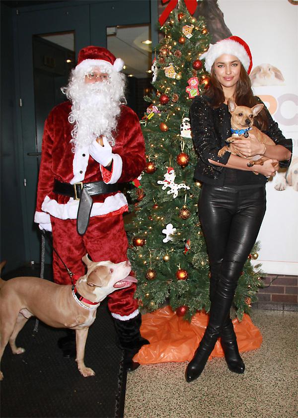 Irina Shayk at the ASPCA shelter in NYC