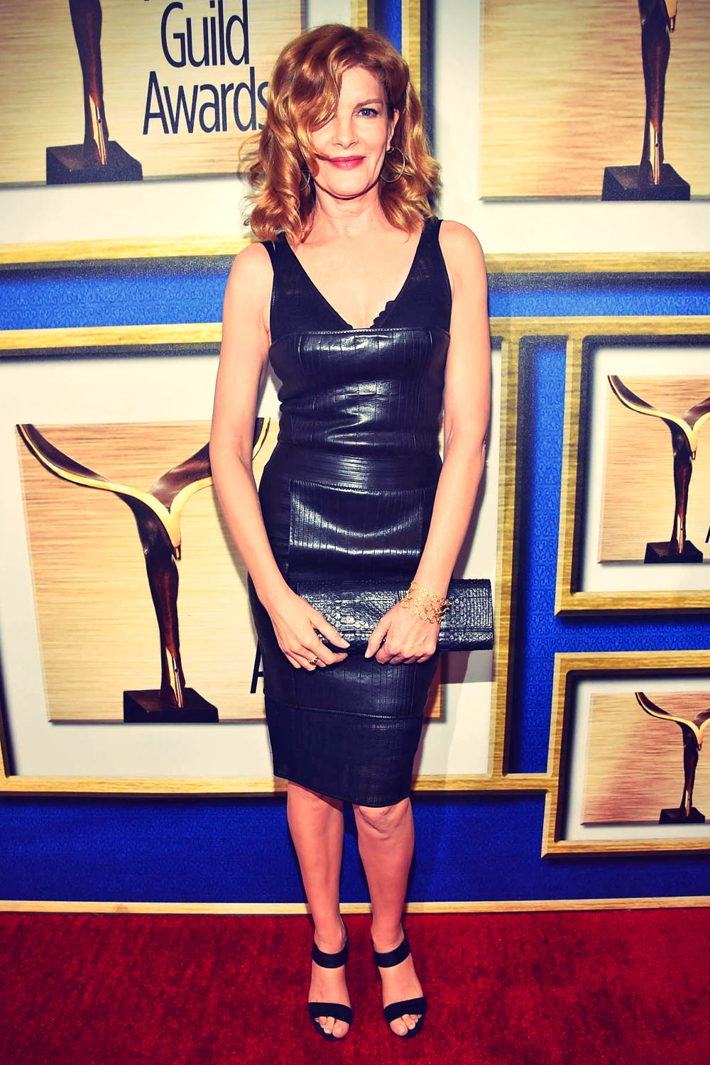 Rene Russo Attends 2015 Writers Guild Awards Leather