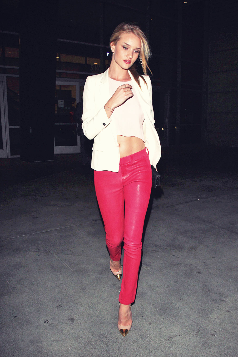 Rosie Huntington-Whiteley attends Rihanna concert